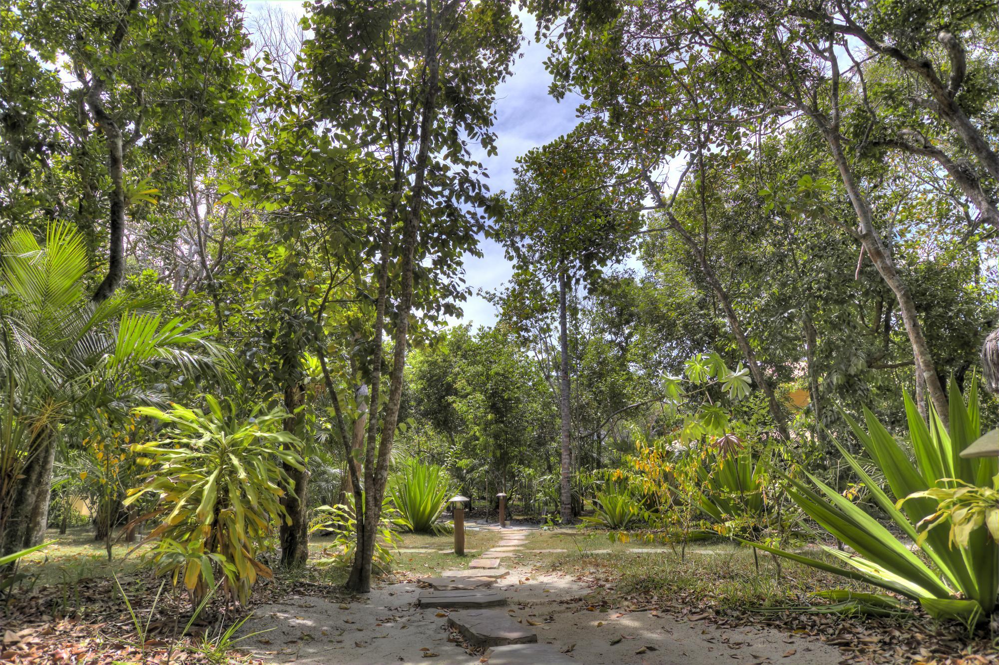 Para relaxar no verão e descansar longe de aglomerações, o Resort Village Mata Encantada, litoral sul da Bahia, é a opção certa para uma experiência tranquila e segura