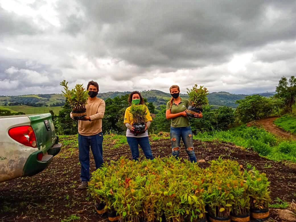 Programa Raízes do Mogi Guaçu chega a proprietários com produção Agroflorestal