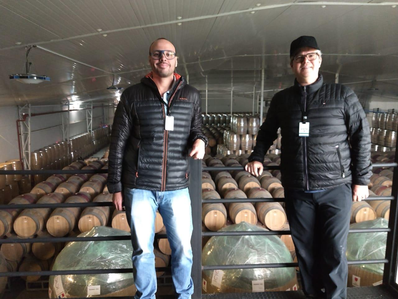 Mercado de vinhos celebra expansão recorde em 2020