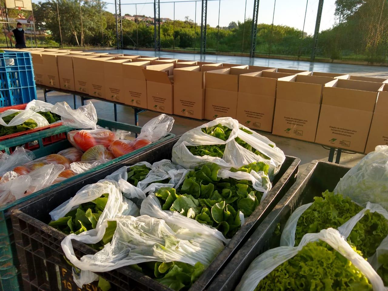 Prefeitura atende 180 famílias no Programa Cesta Verde