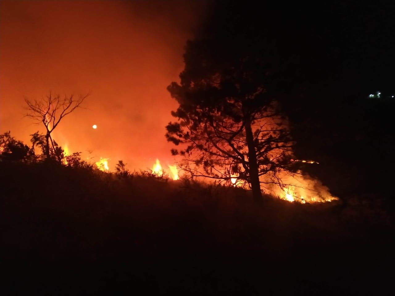 Bombeiros de Serra Negra controlam fogo em área de mais de 21 mil metros quadrados