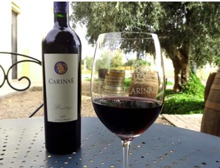 Vinhos da bodega argentina CarinaE são excelentes pedidas para o Dia das Mães
