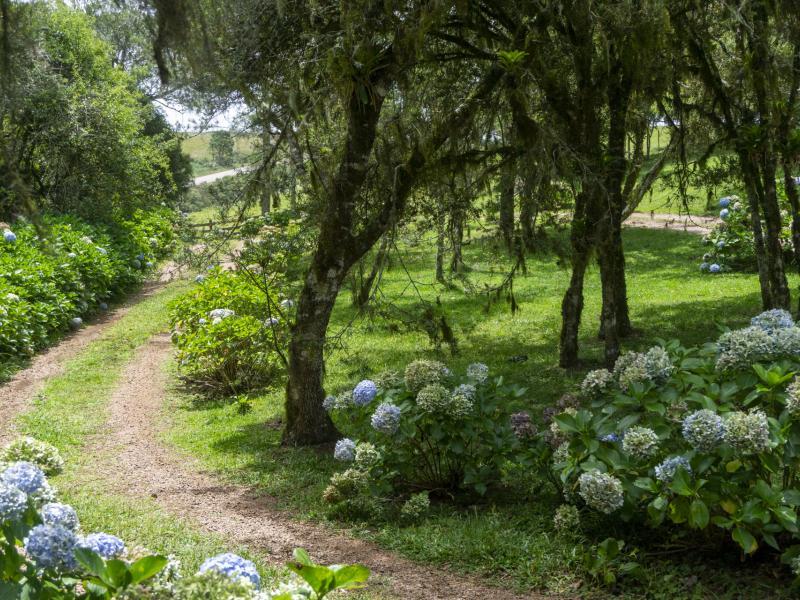 Booking.com indica 7 destinos no Brasil para quem busca contato com a natureza
