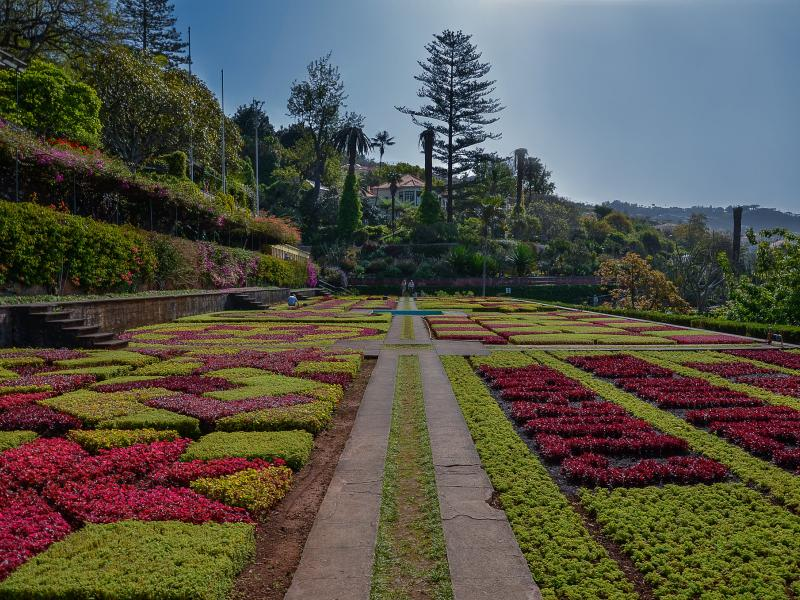 Quatro maravilhas do paisagismo na Ilha da Madeira