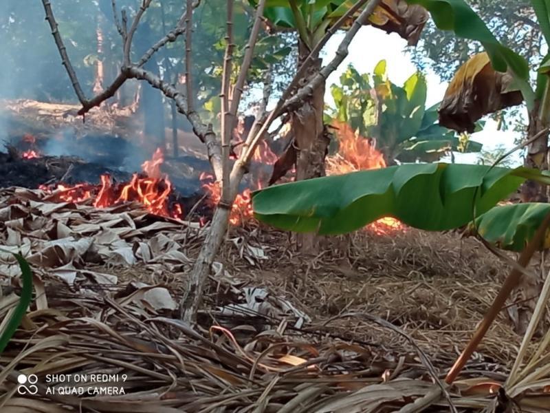 Autoridades de Amparo apresentam duas pessoas por queimada em terreno