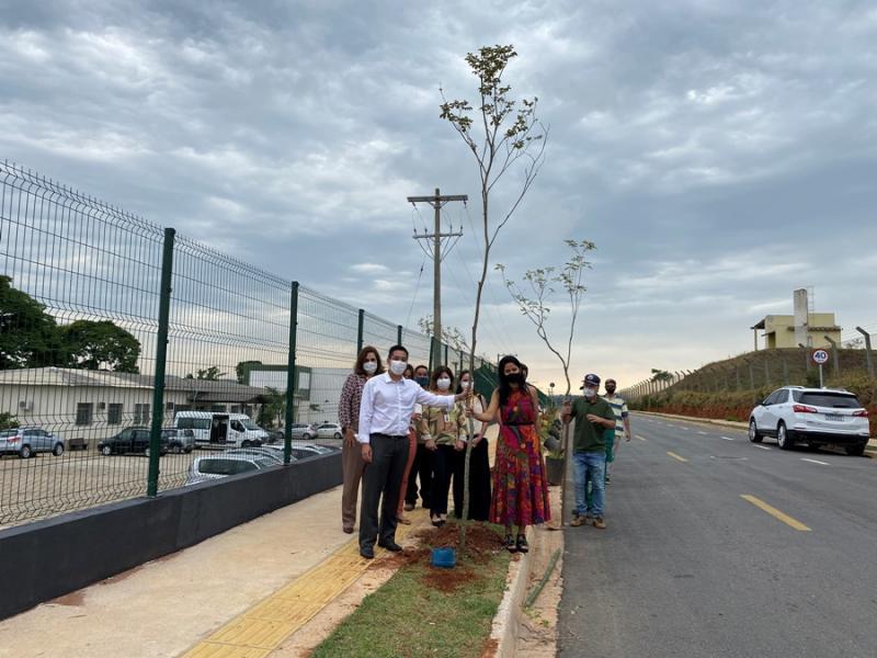 TE Connectivity planta 50 árvores em Bragança Paulista em comemoração aos seus 50 anos no Brasil